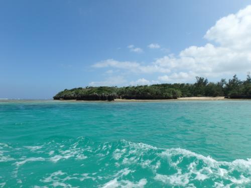 ボートは湾の出口(?)付近まで行きます。<br />潮が引いていたのでサンゴにぶつかるんじゃないかと思うくらいの浅瀬もありましたが、さすが船頭さんは慣れていらっしゃる…<br />しっかり見所を案内して頂きながらクルージングを楽しみました。