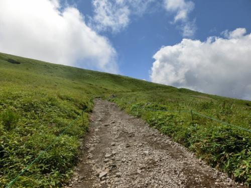コロボックリヒュッテを左に見て車山肩の斜面(写真)を登っていく。青い空と白い雲がいかにも夏山らしい。