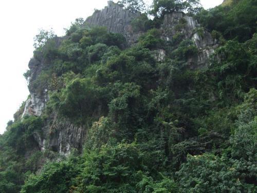 ティエンクン洞を見学するため下船。<br />岩を近くで見あげるとこんな感じ。<br />