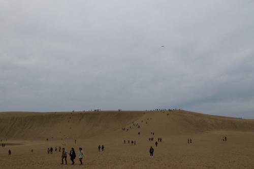 坂道を下って行きます。<br />上手く歩かないと砂が靴に入ってしまいます。<br /><br />ようやく一番低くなっている場所にやって来ました。<br />ここから上り坂です。