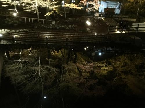 川に写る様子は、まるで川の中にもみじが生えているような。。<br />とても幻想的な光景です。<br /><br />こんなステキな紅葉演出ははじめてです!<br /><br />めちゃ感激しました><。<br /><br />川のゆるやかな流れにくゆる映り込みがまたさらにファンタジック