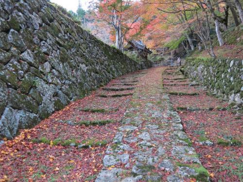 百済寺(ひゃくさいじ)<br /><br /> 名前のとおり、百済(くだら)と繋がりが深いようです。 日本海は朝鮮半島から敦賀や小浜に来るのは瀬戸内海経由より簡単かもしれない。 そこから北国街道を経て、この地に大陸の最先端の文明が入ってきたのです。 <br />さてこの写真登りとみるか下りとみるか?