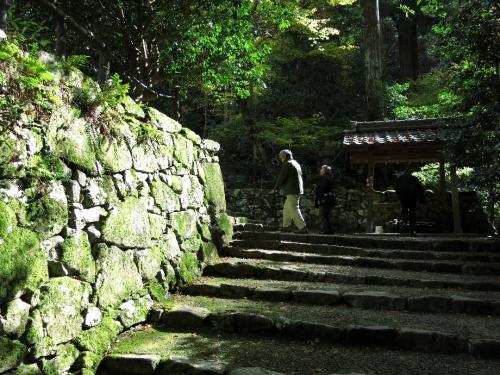 次いで西明寺(さいみょうじ)へ<br /><br /> どこの寺も階段がきつい。 山城を兼ねているのでしょう。