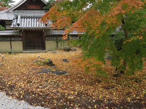 永源寺<br /><br /> ここは紅葉で知られた禅寺です。<br />やはり10日〜2週間前がピークだったようです。