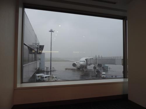 おはようございます☆<br />雨女パワー発揮!羽田は雨。<br />ホテルを出て搭乗待ち中〜