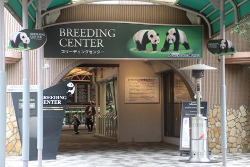 14時半頃、レッサーパンダのいるふれあいの里のハロールームやふれあい広場のコツメカワウソを見学した後、ブリーディングセンターへ