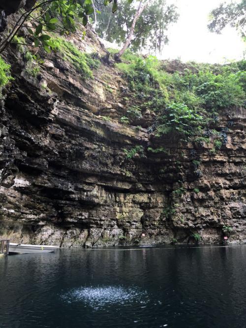 地層を伝って流れる水が落差をもってセノーテ水面へと注ぎます。<br /><br />この水音が、壁に反響をして響きます。。。<br /><br />これが、このセノーテの名前「響きのセノーテ」の由来です。<br /><br />景色だけでなく、神聖な音も是非楽しんでみてください。<br /><br />