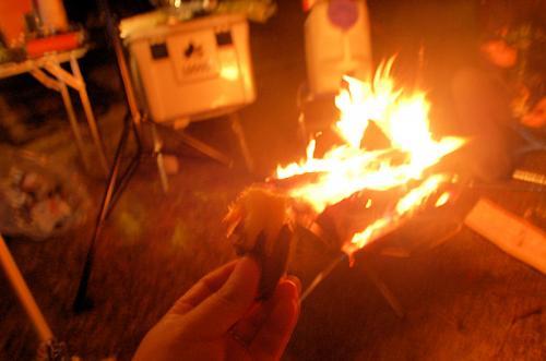 せっかくたき火をしたので、焼き芋を焼いた。