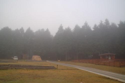 これが森の天気なのだろうか。