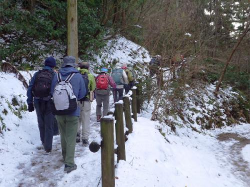 遊歩道のようなコースを登って行きます。<br />木の柵が現れて来ました。<br /><br /><br />