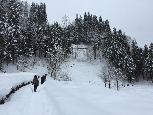 ずんずん雪の中を登っていくことになります