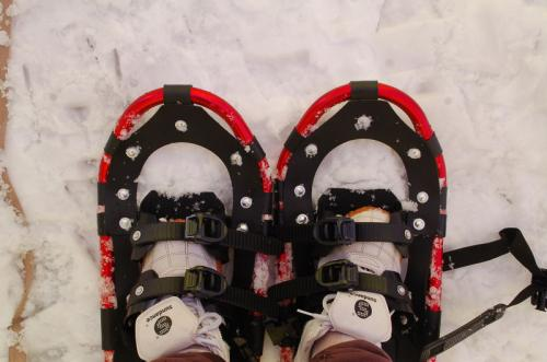 靴の下にスノーシューを履いて、雪の上をペタペタ歩き回った。