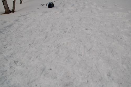 スノーシューで地固めしたが、うまく地固めできず、凸凹になってしまった。