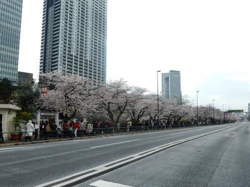 昼食は目黒川で露店のお好み焼きを食べただけなので、飯田橋駅に到着後モスバーガーへで軽食を。<br />16時過ぎ、外堀通りを歩きます。