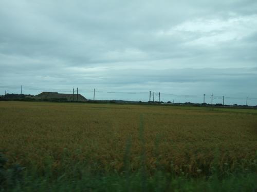 新潟県から山形県へ国道113号線を通って行きました。