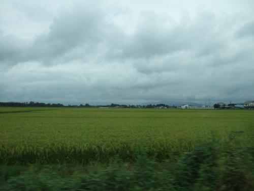 米沢も新潟と似ていて田んぼだらけ