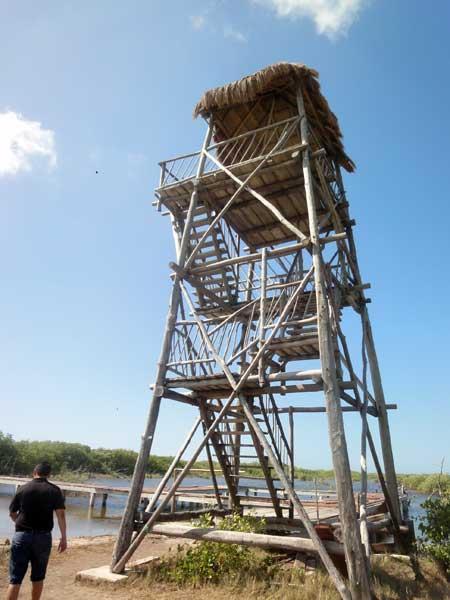 展望タワーに到着!!<br /><br />ここからアメリカン・クロコダイルの生息する環境保護区を一望できます。<br /><br />展望の写真もあるのですが、それは是非ご自身にて確認して頂きたいと思います(^^)