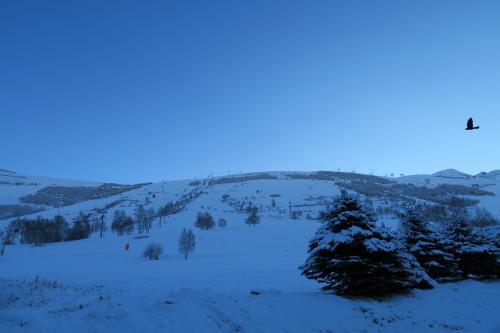 やや新雪がいっぱい・・・リゾートビレッジは標高1,650mにあります。ここらは20cmぐらいの新雪でしょうか? 一見雪があるように見えるのですが、前日までは草地だったようで、本来なら全部がコースなのですが、下山コースのみしかオープンしていませんでした。この山の裏側にとても広いスキーフィールドが広がります。