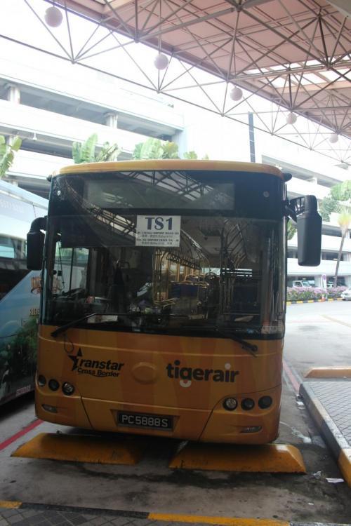 そしてこれがバス。