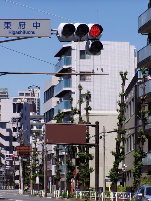 最寄駅は、京王線府中駅か武蔵野線北府中駅。<br /><br />いずれで降りても歩いて10分近く歩く。<br /><br />ぼくは、京王線東府中駅で降り、府中の森公<br />園をめざした。