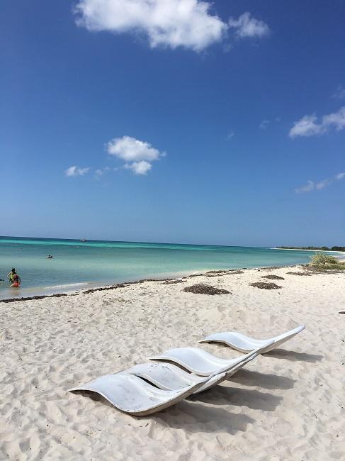 途中の休憩ポイントのビーチです。コスメル島の南は本当にきれい。<br />手付かずの自然と青い海。。。<br /><br />ここでは、シュノーケルが入ります。<br /><br />