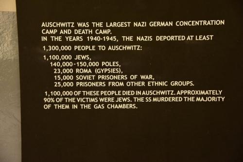 ナチスのターゲットになった人種。