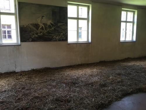 ごみのように扱われた囚人の住居。