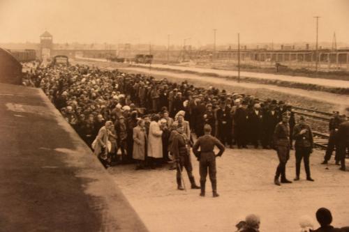 ハンガリーから連行されたユダヤ人。