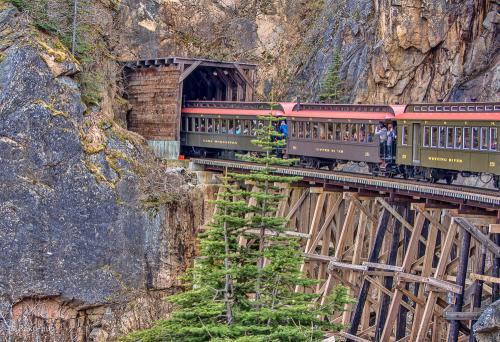 トンネルが 何か所かありましたが<br /><br />写すのに 必死です。<br /><br />何とか トンネルの入口に 列車が入るところが撮れて<br /><br />良かったです。