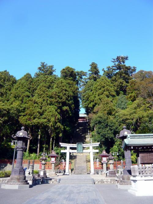 食べ過ぎちゃったので塩釜神社の階段上る!
