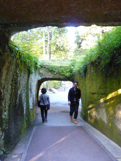 木漏れ日が美しいトンネル。