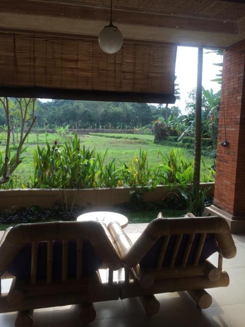 部屋の前に田んぼビューのテラス<br />残念ながら、田んぼはとても狭くなってしまっています。<br />でも、とても快適に過ごせる場所です。