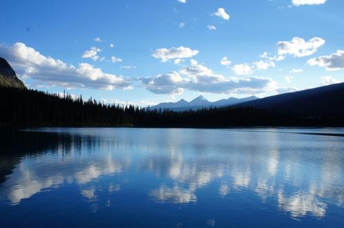 湖の周りはトレイルになっていて、のんびりお散歩できます♪