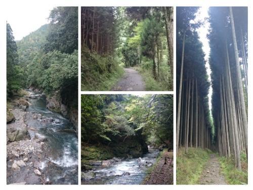 それにしても絶景です。観光客でごったがえす京都にもこんなにも清々しく静かな場所があるとは・・・