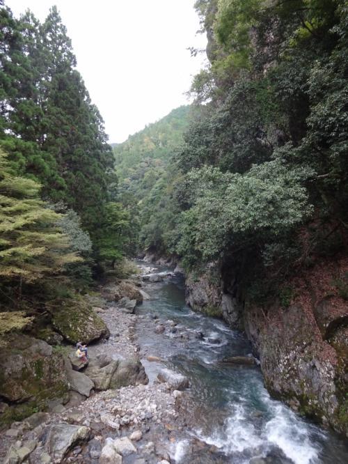 『めっちゃキレイやん』と思わず関西弁で叫ぶ。上高地や尾瀬にも負けない自然の景観。<br /><br />