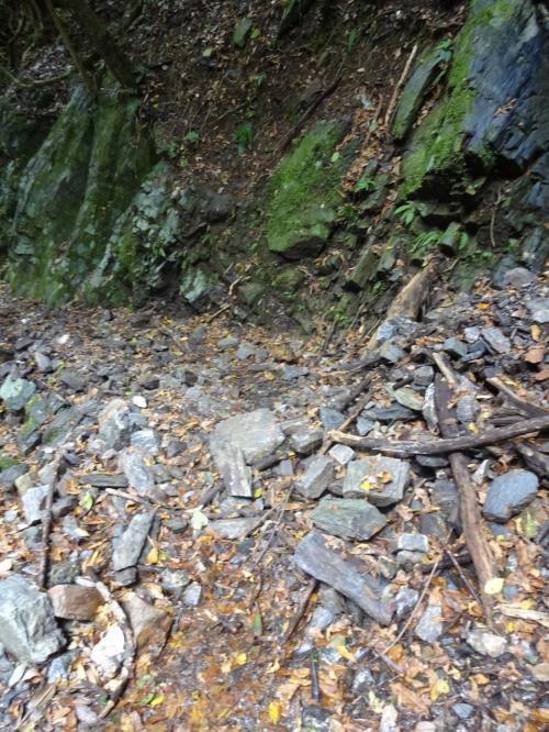 水が川べりにも浸透してきて、足元もビシャビシャに濡れる。