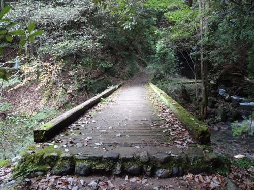 この木橋を渡ると車道に出るはず・・・早くホッとしたいよ~( ;∀;)<br />