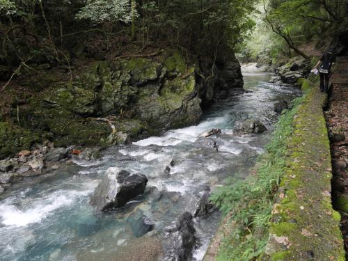 整備されているけれど、川の流れも早く足場も悪いせいか、かなり歩きにくい。
