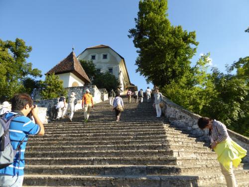 15分ほどで島に到着。99段の階段を登ります。旅が始まったばかりなので、皆さん余裕で登っていきます。