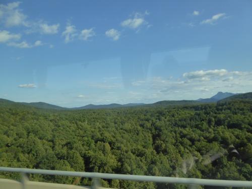 このような森林地帯を延々と抜けていきます。