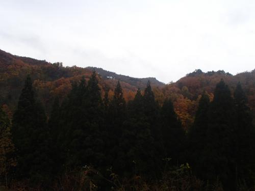 銀山温泉、1時間の散策後は、鳴子峡へ向かいます