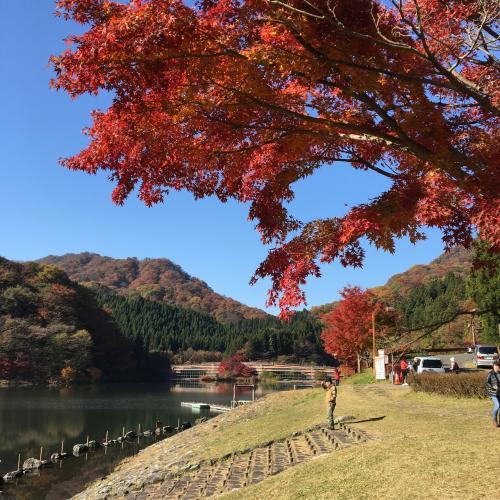 軽井沢へ向かう途中で碓氷湖へ立ち寄り紅葉狩り。
