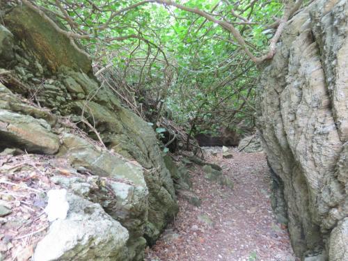 防空壕のような、穴を掘られた場所もありました・・