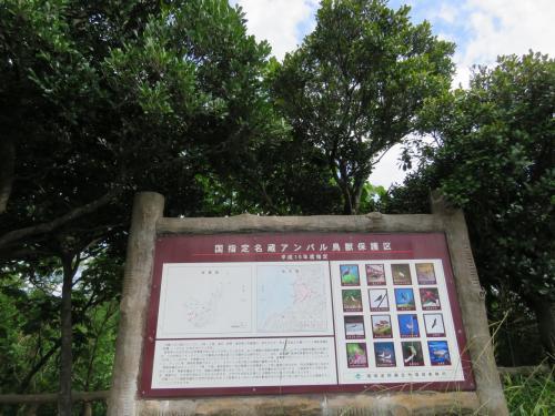 車で更に石垣島北西部に進むと、「名蔵アンパル」と書かれた所が見えてきました・・
