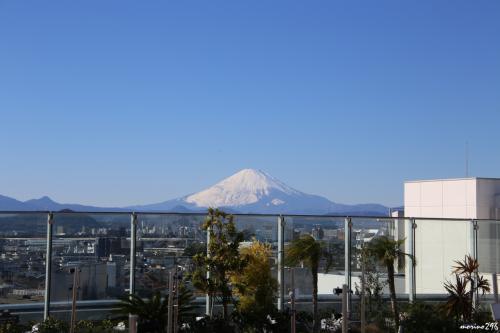 茅ヶ崎ラスカの屋上から眺める富士山 12:35頃<br /><br />JR東海道線の車窓から富士山が見えるかチェックしながら茅ヶ崎駅に到着。<br />早速、駅ビル(ラスカ)の屋上へ。