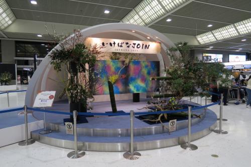 通常第1ターミナルのウズベキスタン航空も、チャーターだと第2ターミナルになるのか?