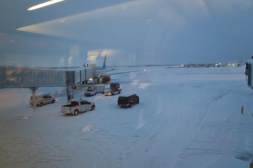 このときは、雪が積もっていることと曇り空しか気にならなかった