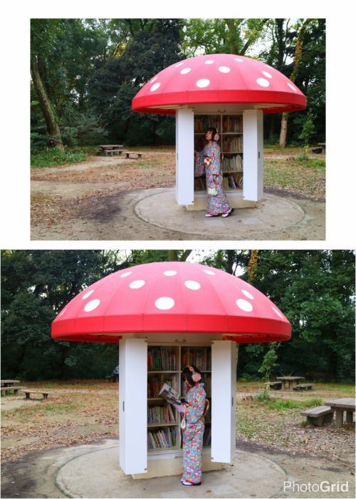 ちまっ<br /><br />京都府立植物園のシンボル、「きのこ文庫」<br />柄の部分の扉を開けると、中には絵本や図鑑。<br />