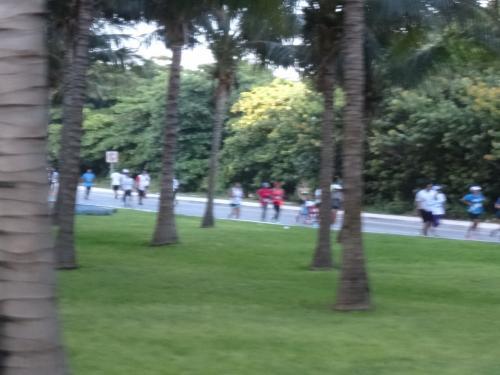 さて、今日はマラソン大会のようで、大勢の人が走っています。<br /><br /><br />