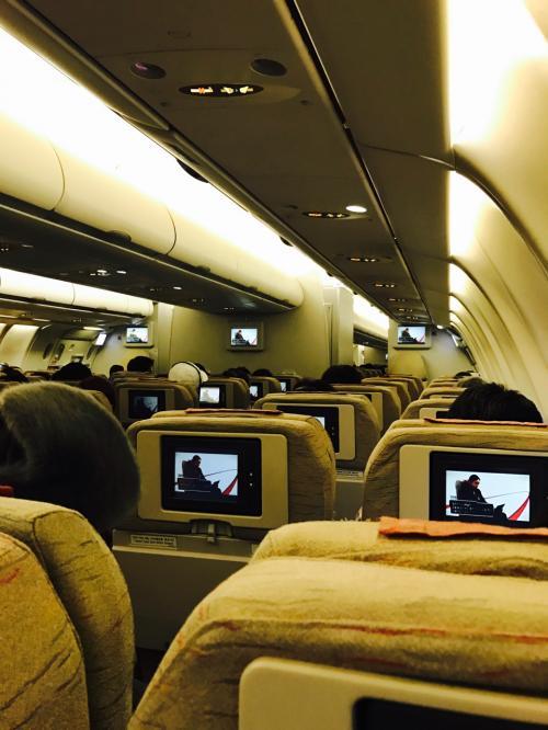 座席は2-4-2配列<br /><br />友達と2人なので2列シート<br /><br />トイレ気兼ねしなくていいので好きです